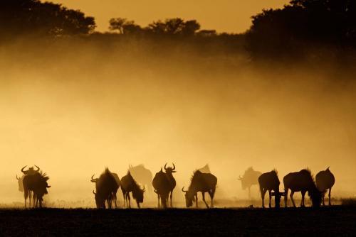ludys-reizen-rondreizen-africa-03