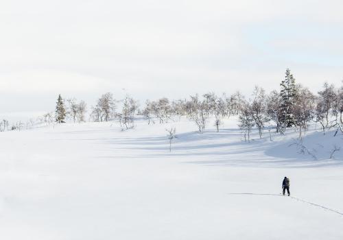 ludys-reizen-wintersport-sneeuw-01